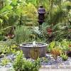 Hình ảnh lãng mạn của sự kết hợp hồ nước với cây cảnh