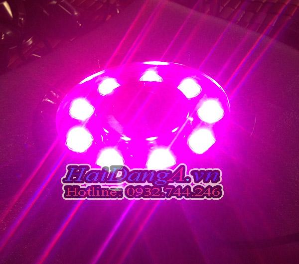 Thêm một dạng màu tím rất đẹp khác của đèn LED âm nước này