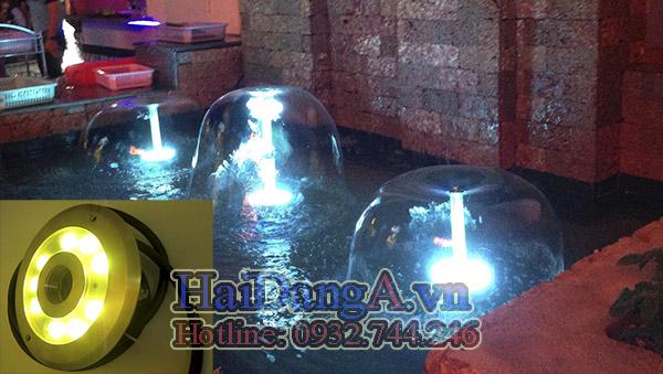 Đèn LED âm dưới nước có lỗ chiếu sáng đều màng nước đầu phun hình nấm