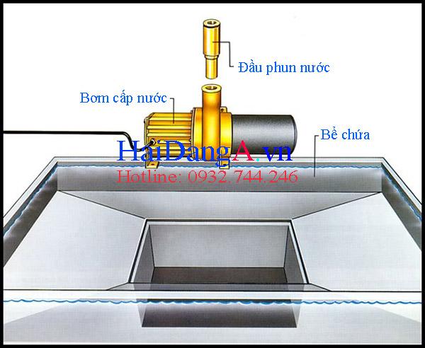 Thành phần cấu tạo sân phun nước